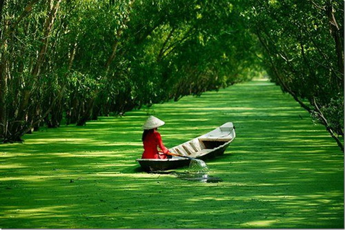 Thương lắm miền Tây Thanh Mai, Bình Mập, Andy Phương, Lâm Vỹ Văn, sáng tác: Trần Anh Khôi